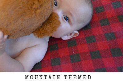 Mountain Themed Nursery Reveal